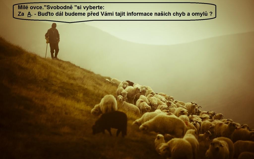 Pastýř 1.