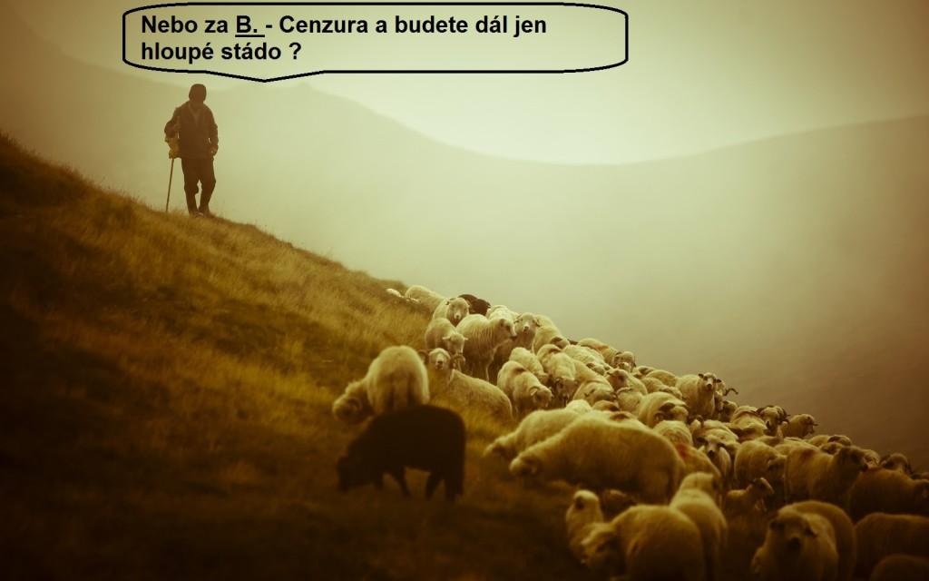 Pastýř 2.